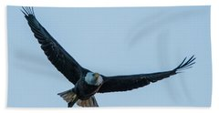 Beach Sheet featuring the photograph Successful Bald Eagle by Jeff at JSJ Photography