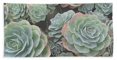 Succulent 2 Beach Sheet