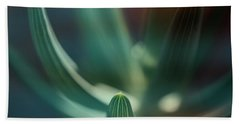 Succulent Emerging Beach Sheet by Robert FERD Frank