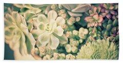 Beach Towel featuring the photograph Succulent Garden by Ana V Ramirez