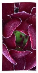 Succulent Mystery Beach Towel by Russell Keating