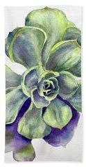 Succulent Plant Beach Sheet