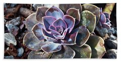 Succulent Plant Poetry Beach Towel