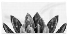 Succulents Flowers Black Beach Towel