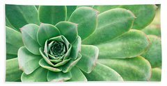 Succulents II Beach Towel