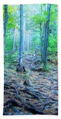 Sugarloaf Mountain Trail Beach Sheet by Phil Perkins