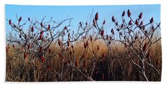 Sumac At The Beach Beach Sheet