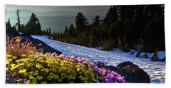 Beach Towel featuring the photograph Summer And Winter by David Chandler