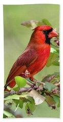 Summer Cardinal Beach Sheet