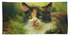 Beach Towel featuring the photograph Summer Cat by Jutta Maria Pusl