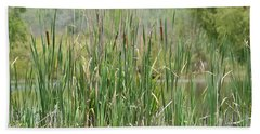 Beach Towel featuring the photograph Summer Cattails by Maria Urso