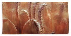 Summer Corn Beach Towel by Agnieszka Mlicka