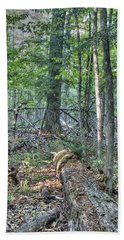 Summer In A Canadian Forest Beach Towel