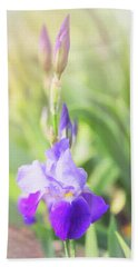 Beach Towel featuring the photograph Summer Iris by Sue Collura