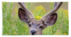 Summer Mule Deer Beach Sheet