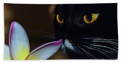 Summer Sniffing Plumaria Beach Towel