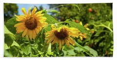 Summer Sunflowers Beach Sheet