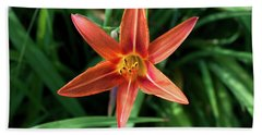 Summer Tiger Lily Beach Sheet by Jeff Severson