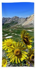Beach Towel featuring the photograph Summer Tundra by Karen Shackles