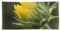 Summer's Promise - Sunflower Beach Towel