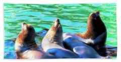 Sun Basking Seals Beach Towel