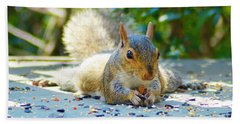 Sun Bathing Squirrel Beach Towel