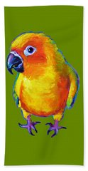 Sun Conure Parrot Beach Sheet