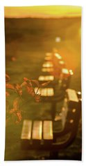 Sun Drenched Bench Beach Towel