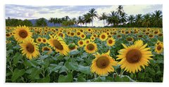 Sun Fields Beach Towel