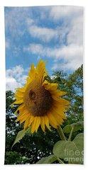 Sun Power Beach Sheet by Angela J Wright