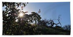 Beach Sheet featuring the photograph Sun Shines Through The Greenery by Matt Harang