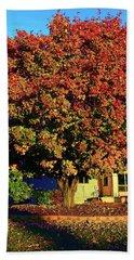 Sun-shining Autumn Beach Sheet