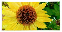 Sun Soaked Echinacea Beach Towel