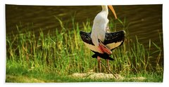 Sunbathing Delta-winged Painted Stork  Beach Towel