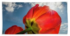 Beach Towel featuring the photograph Sunbeams And Tulips by Adam Romanowicz