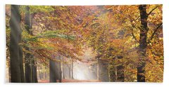 Sunbeams In A Forest In Autumn Beach Sheet by IPics Photography