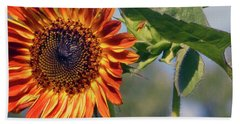 Sunflower 2016 3 Of 5 Beach Sheet by Tina M Wenger