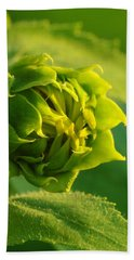 Sunflower Blossom Beach Towel