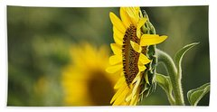 Beach Sheet featuring the photograph Sunflower Delight by Kathy Churchman