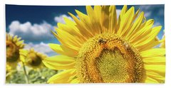 Beach Towel featuring the photograph Sunflower Dreams by Jim DeLillo