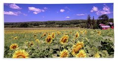 Beach Towel featuring the photograph Sunflower Farm by Jim DeLillo