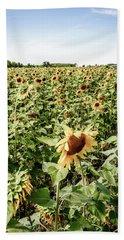Beach Sheet featuring the photograph Sunflower Field by Alexey Stiop