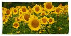 Sunflower Field Beach Sheet