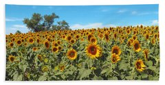 Sunflower Field One Beach Sheet by Barbara McDevitt