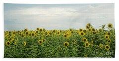 Sunflower Field Beach Towel