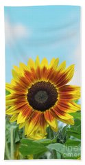Sunflower Harlequin Beach Towel