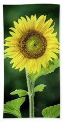 Sunflower In Bloom Beach Towel
