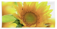 Sunflower In Golden Glow Beach Towel