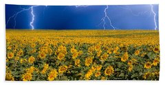 Sunflower Lightning Field  Beach Sheet by James BO  Insogna