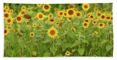 Sunflower Patch Beach Sheet